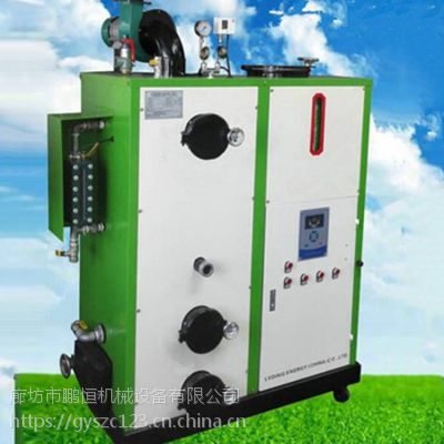 重庆省永川市厂家生产生物质颗粒热水锅炉