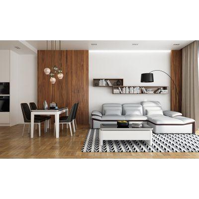 诗尼曼家居100客厅家具,多功能真皮沙发