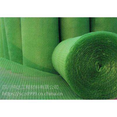 成都三维植被网厂家、四川仲达www.bpstfh.com
