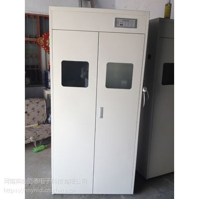 2.5河南郑州开封 气瓶柜危险品柜 毒品柜 全钢边中央台药品试剂器皿柜通风柜厂家