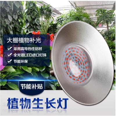 XIHV全光谱LED植物补光工矿灯大棚草莓瓜果种植人工补光50瓦