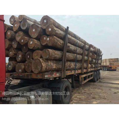 珠海进口铁杉 进口木方 工地方条批发厂家
