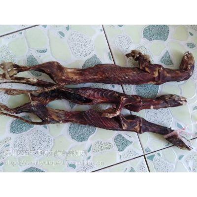 黄鼬粉一斤能服用几个疗程,一天吃几克,优质商家