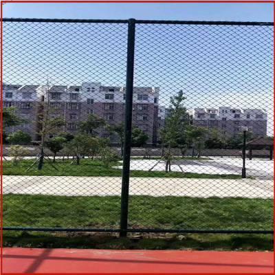 济南球场护栏 防护围栏网 球场围栏网厂家