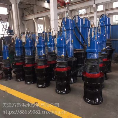 900QZB潜水轴流泵制造厂家