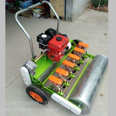 普航药材种植机 各种型号大马力汽油播种机 小型香菜精播机 厂家