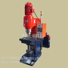 重型PLC径向铆接机LJM30-PLC