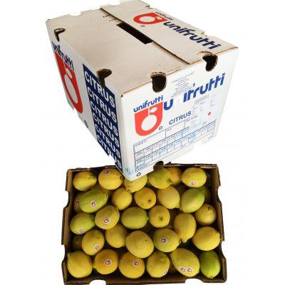 南非进口柠檬尤力克 30斤箱Unifrutti新鲜黄柠檬现货批发直供