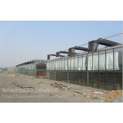 宁夏 玻璃连栋温室大棚 建设公司
