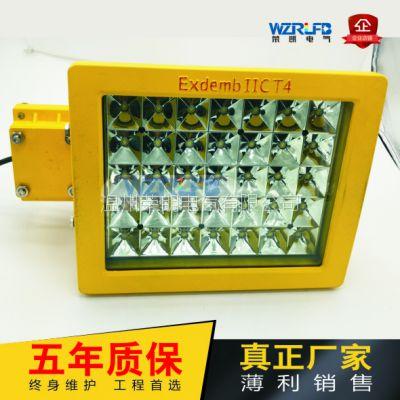 荣朗60WLED防爆灯 护栏式LED防爆道路灯