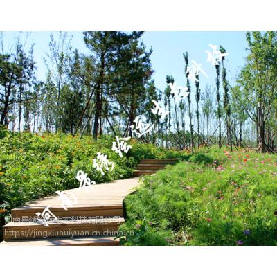 高次团粒喷播 客土喷播材料 三维网喷播植草河南景绣