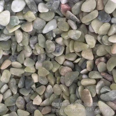 博淼供应透水路面水磨洗米石 圆林景观铺路用石子
