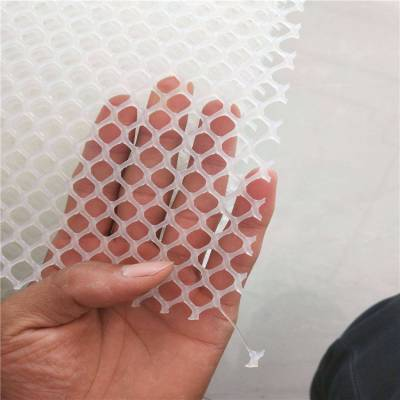 山东塑料网 塑料网规格 白色育雏网厂家