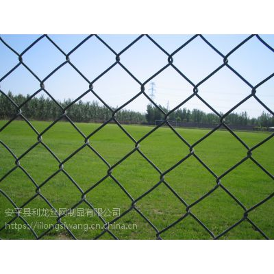 球场围栏网体育场围栏网镀锌边坡主动防护网厂家直销