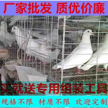 喀什鸽子笼批发4层16位钢丝镀锌笼具兴博厂家特价促销鸽子笼