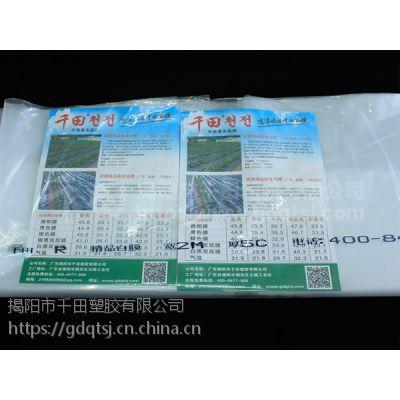 千田聚乙烯超级精品棚膜 大棚膜PE塑料薄膜加厚地膜装修薄膜无滴膜透明膜
