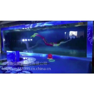 美人鱼表演 陆地小坦克出租出租 冰雕展出租出售 各种娱乐设备出租出售