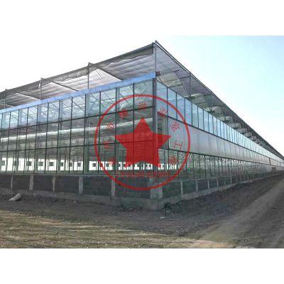 智能联栋玻璃大棚建造厂家——青州瀚洋温室