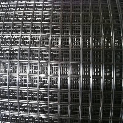 安平县电焊网厂 改拔丝电焊网厂家 热镀锌网片多钱
