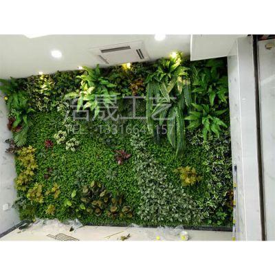 专注原生态仿真植物墙 以假乱真造诣精致 可定制款式