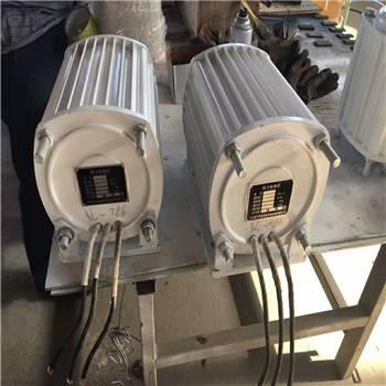山东晟成厂家直销1000w家用小型风力发电机 太阳能风能发电系统 微型发电机组