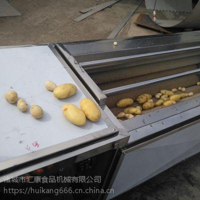 清洗地黄机器 洗药材设备 多功能桔梗去皮清洗机 汇康制造