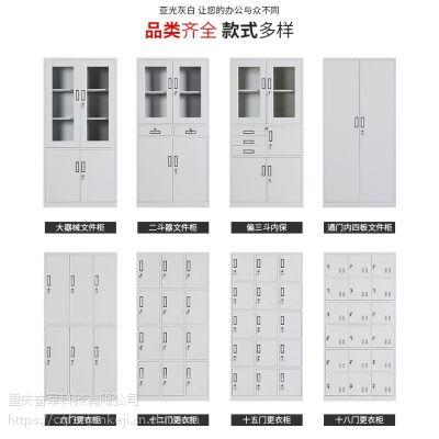 专业定制、文件柜、钢制资料柜、资料存放柜、