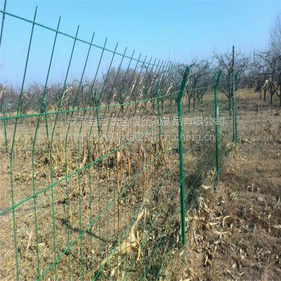 圈地围挡护栏 双边丝护栏安装 绿色铁丝围栏厂家