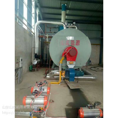 山东锅炉改造厂家/山东山成能源设备有限公司