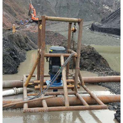 泵城直供立式粉煤灰泵,液下粉煤灰泵-高效耐磨型
