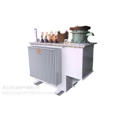 SVR-2500/10馈线调压器