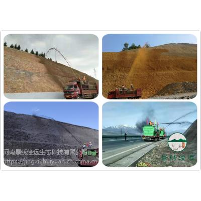 边坡绿化新技术 斜坡工程施工 边坡绿化方案河南景绣理想选择