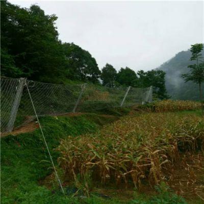 镀锌被动防护网螺旋锚杆施工现场@四川被动防护网用于边坡绿化工程