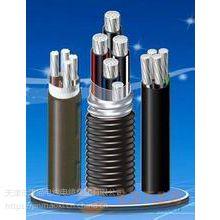 天津津猫线缆 ACWU90联锁铠装铝合金电缆