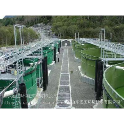 宝石鲈罗非鱼工厂化循环水养殖处理系统