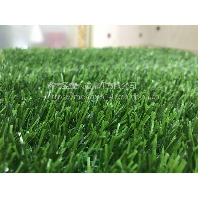 人造仿真草坪地毯幼儿园足球场婚礼展览运动草坪人工塑料假草皮