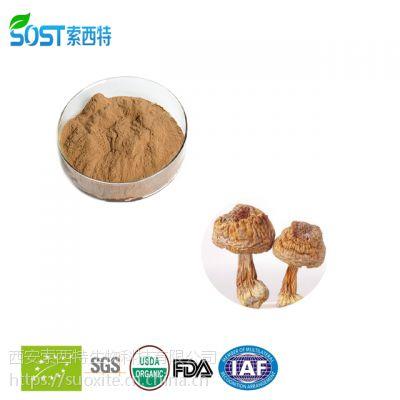 姬松茸提取物 西安索西特生物规格 现货供应 姬松茸多糖