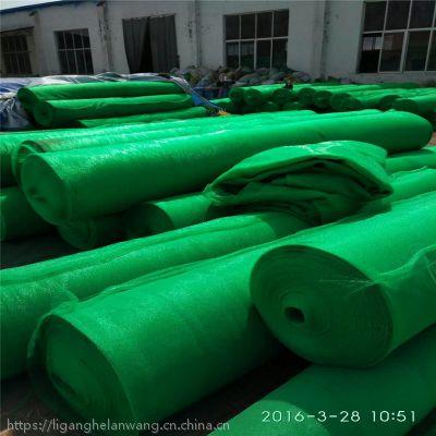 批发加密加厚绿色盖土网 防尘网6针4针3针2针1.5针大量现货聚乙烯网