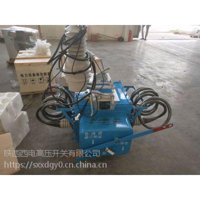 10Kv高压分界负荷开关FZW28-12