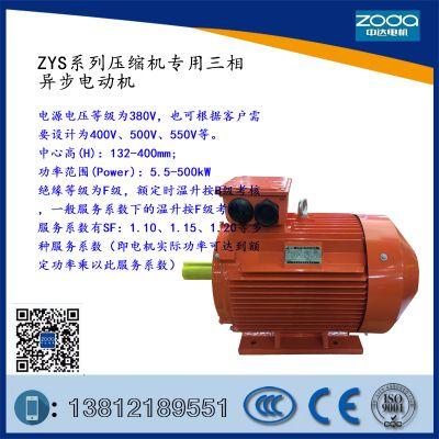 ZYS系列压缩机专用三相异步电动机ZYS 315L-4-160kW SF=1.15A