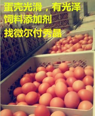 鸡产沙皮蛋?而且蛋壳很薄?