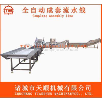 SUS304不锈钢制造海鲜菇加工设备生产线【加工海鲜菇流水线】