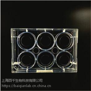 上海百千生物J10011蛋白预包被器皿-可定制