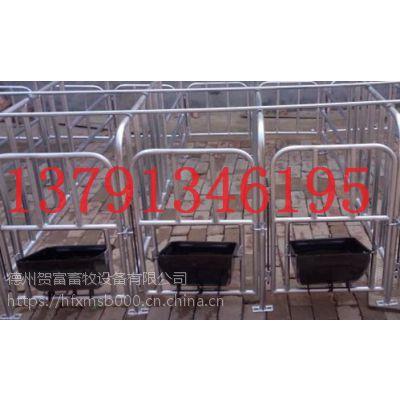 母猪定位栏猪限位栏德州贺富全国供应