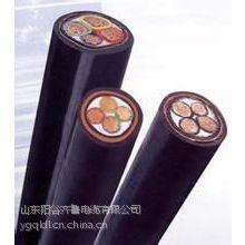 供应低压齐鲁电缆VV0.6/1KV 5*10