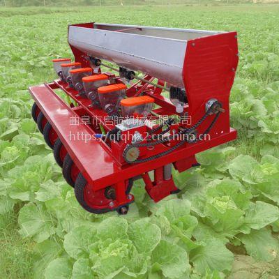 小型蔬菜精量播种机 多功能手推式甜菜播种机 牧草种植机价格