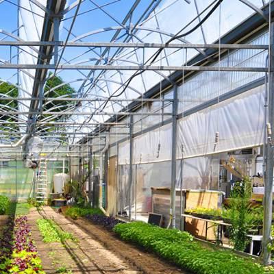 温室大棚骨架加工制作|温室安装-河南绿联温室