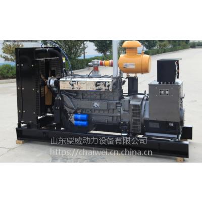 柴威100KW CW-100GFZ沼气发电机组