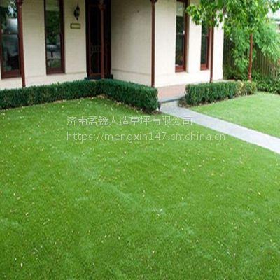 加密人造草坪/足球场人工草皮/仿真塑料草坪