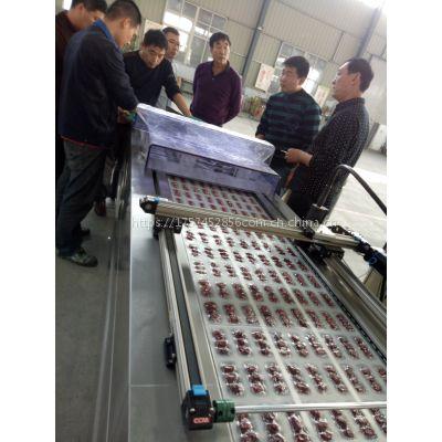 供应DZ-520全自动大枣真空包装机 红枣小枣真空包装